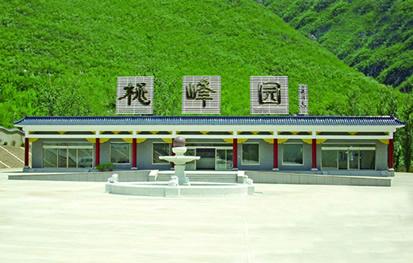 桃峰陵园园内风景-1