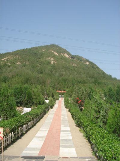北京市昌平区九里山公墓二区风景-2